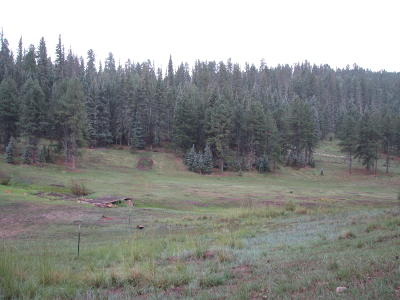 Residential Lots & Land For Sale: 28 American Court