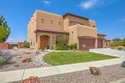Albuquerque Single Family Home For Sale: 2109 Retama Court SE