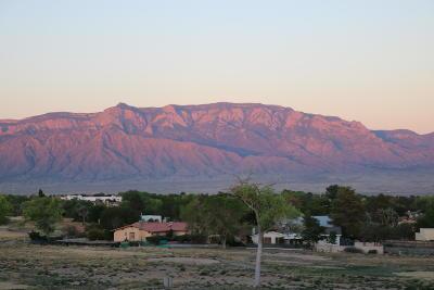 Albuquerque, Rio Rancho Single Family Home For Sale: 616 Troon Drive SE