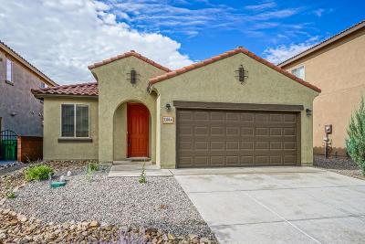 Rio Rancho Single Family Home For Sale: 3301 Llano Vista Loop Loop NE