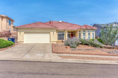 Albuquerque Single Family Home For Sale: 8116 Rancho Lindo Court NW
