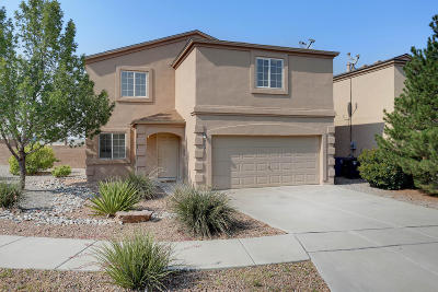 Albuquerque Single Family Home For Sale: 7123 Paese Place NW