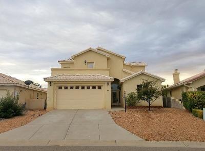 Albuquerque, Rio Rancho Single Family Home For Sale: 224 Chaparral Loop SE