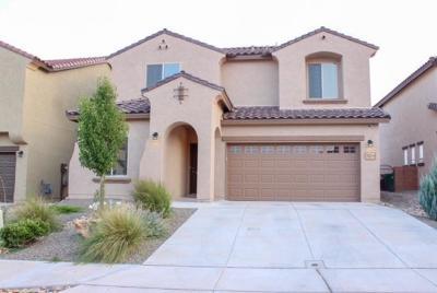 Rio Rancho Single Family Home For Sale: 3213 Llano Vista Loop NE