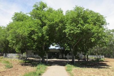 Single Family Home For Sale: 7015 B Isleta Boulevard SW