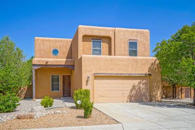 Albuquerque NM Single Family Home For Sale: $205,000