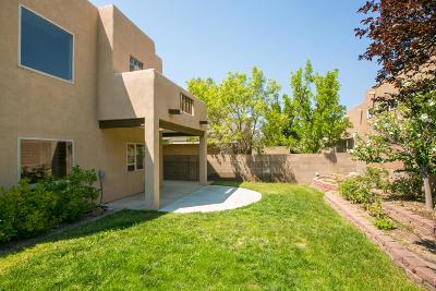Bernalillo County Single Family Home For Sale: 10121 Irbid Road NE