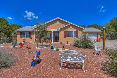 Edgewood Single Family Home For Sale: 179 Thunder Mountain Road NE