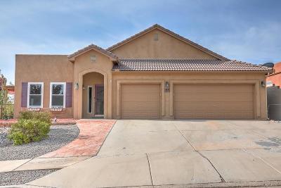 Albuquerque, Rio Rancho Single Family Home For Sale: 5762 De Baca Court NE