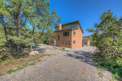 Sandia Park Single Family Home For Sale: 49 Longview Road
