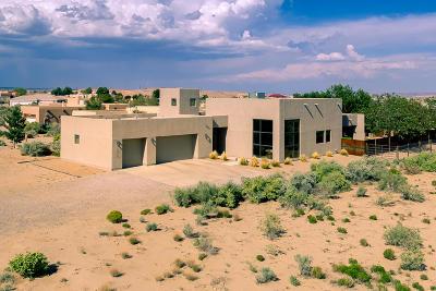 Rio Rancho Single Family Home For Sale: 1912 Nez Perce Loop NE