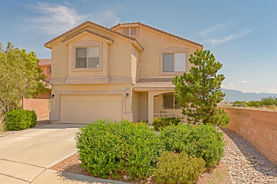 Rio Rancho Single Family Home For Sale: 1300 Peppoli Loop SE