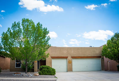 Albuquerque, Rio Rancho Single Family Home For Sale: 1506 Salida Sol Drive SE