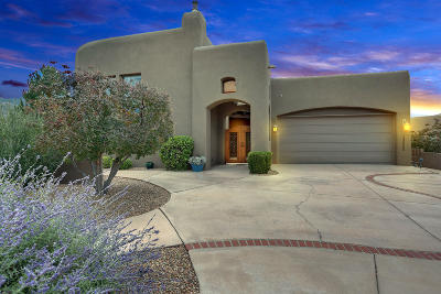 Albuquerque Single Family Home For Sale: 13255 Twilight Trail Place