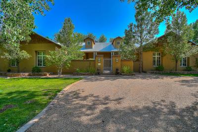 Los Ranchos Single Family Home For Sale: 970 Bonita Rosas Road NW