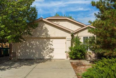 Rio Rancho Single Family Home Active Under Contract - Short : 3055 Glorieta Meadows Drive NE