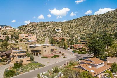 Single Family Home For Sale: 4701 Paso Del Puma Place NE