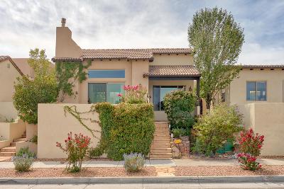 Albuquerque Single Family Home For Sale: 5112 San Adan Avenue NW