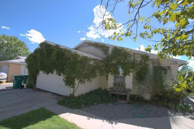 Rio Rancho Single Family Home For Sale: 3405 Martin Meadows Drive NE