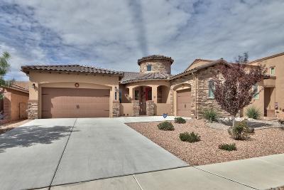 Albuquerque, Rio Rancho Single Family Home For Sale: 1733 Vista De Colinas Drive