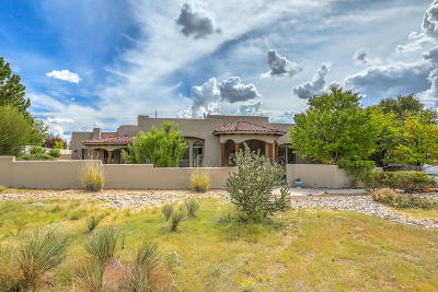 Albuquerque Single Family Home For Sale: 10620 Santa Monica NE
