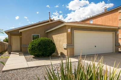 Rio Rancho Single Family Home For Sale: 2831 Solano Del Sol Drive NE