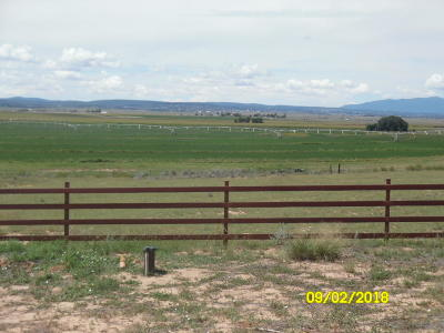 Santa Fe County Farm & Ranch For Sale: 368 Valley Irragation Road