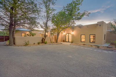 Albuquerque Single Family Home For Sale: 1607 Griegos Road NW