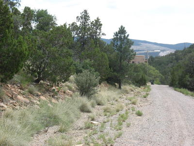 Cedar Crest Residential Lots & Land For Sale: 14 Cielo