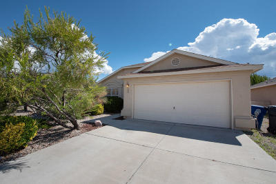Albuquerque Single Family Home For Sale: 700 Glacier Bay Street SE