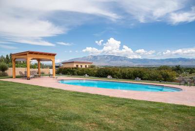 Albuquerque Single Family Home For Sale: 6564 Calle Redonda NW
