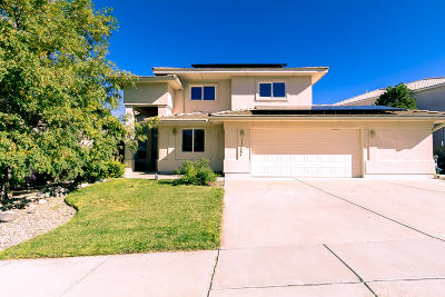 Albuquerque Single Family Home For Sale: 11127 Jordan Avenue NE
