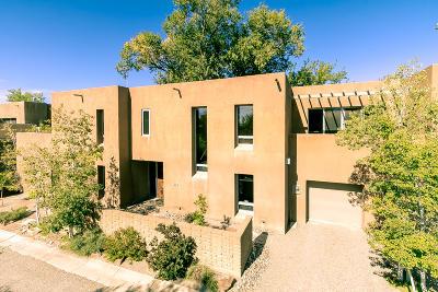 Albuquerque Single Family Home For Sale: 916 Acequia Escondida NW