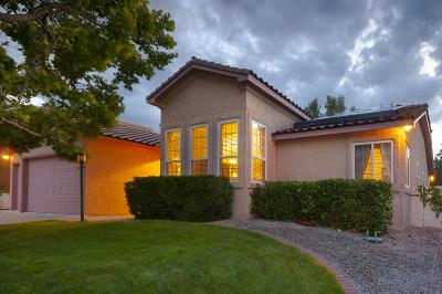 Albuquerque, Rio Rancho Single Family Home For Sale: 3133 Ashkirk Loop SE