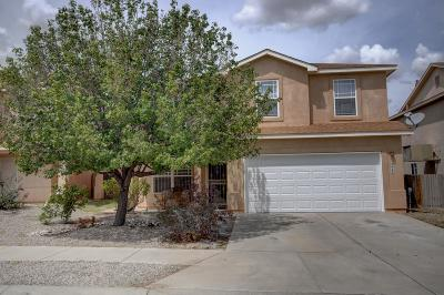 Albuquerque Single Family Home For Sale: 2423 Big Pine Drive NW
