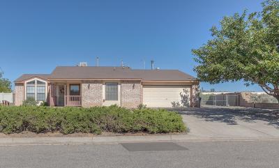 Albuquerque, Rio Rancho Single Family Home For Sale: 1637 Salt River Court NE