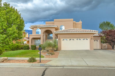 Albuquerque Single Family Home For Sale: 8420 Vina Del Sol Drive NE