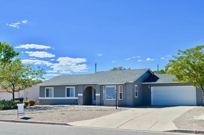 rio rancho Single Family Home For Sale: 665 Saratoga Drive NE