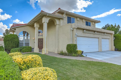 Albuquerque Single Family Home For Sale: 9112 Surrey Road NE