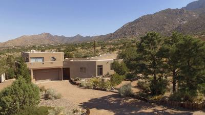 Albuquerque NM Single Family Home For Sale: $695,000