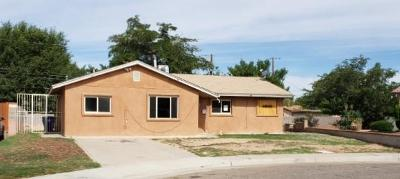 Albuquerque Single Family Home For Sale: 3821 Headingly Avenue NE