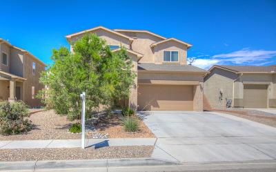 Albuquerque, Rio Rancho Single Family Home For Sale: 2837 Delicias Road SE