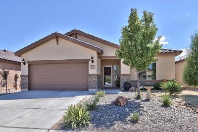 Albuquerque, Rio Rancho Single Family Home For Sale: 3836 Puenta Alto Avenue NE