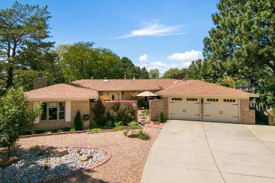 Albuquerque Single Family Home For Sale: 1005 Morina Court NE