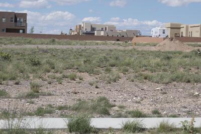 Albuquerque Residential Lots & Land For Sale: 6523 Vista Del Prado Road NW #19