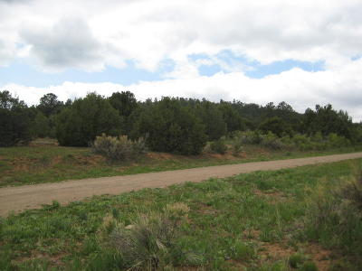 Tijeras Residential Lots & Land For Sale: 9 Sky Limit Road