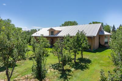 Los Ranchos Single Family Home For Sale: 8621 Rio Grande Boulevard NW