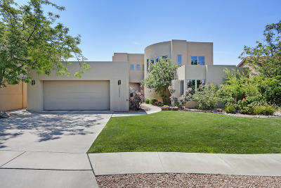 Bernalillo County Single Family Home For Sale: 12034 Irish Mist Road NE