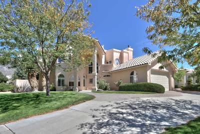 Bernalillo County Single Family Home For Sale: 12115 Coral Dawn Road NE