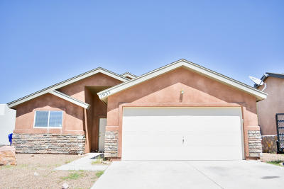 Las Cruces Single Family Home For Sale: 3933 Monte Lindo Court